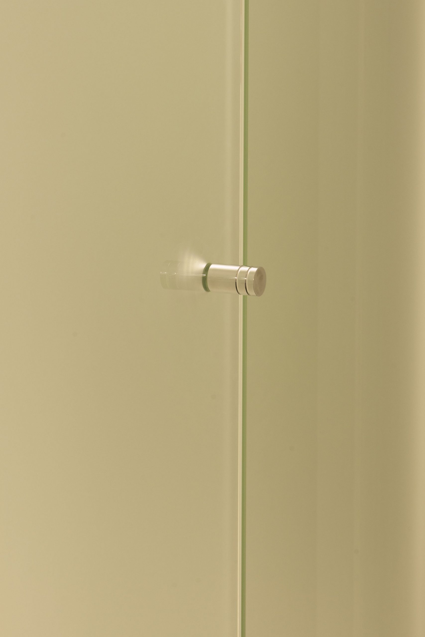 Frameless Shower Screen Handle